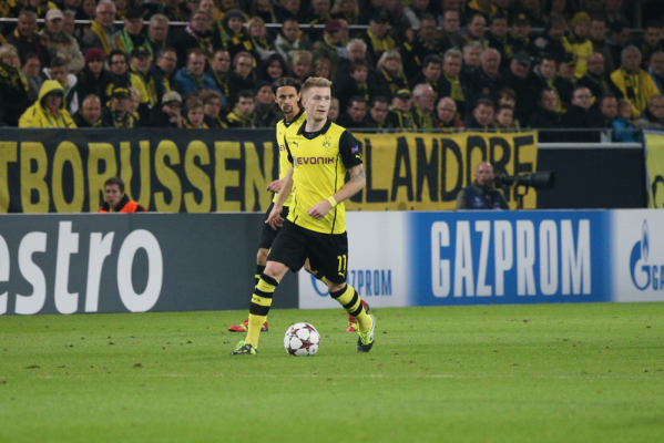 Marco Reus wrócił do treningów