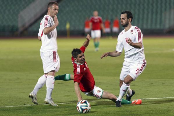 """""""Wygraliśmy dla wszystkich Albańczyków"""""""