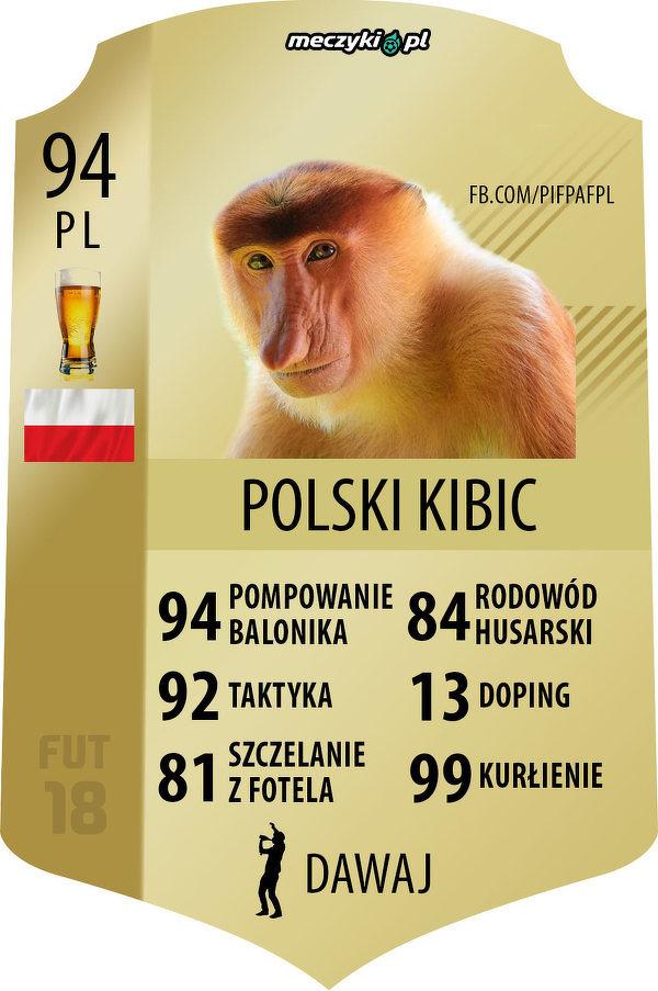 Polski kibic