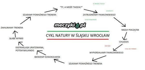 Cykl życia Śląska Wrocław