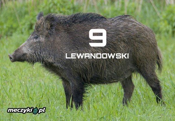 """Czy Lewy jest """"dzikiem""""?"""