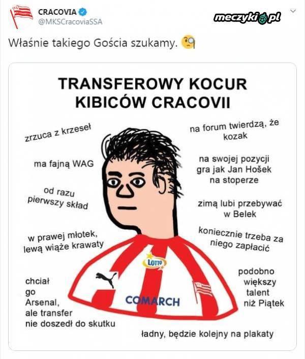 """Cracovia i jej """"Transferowy kocur"""""""