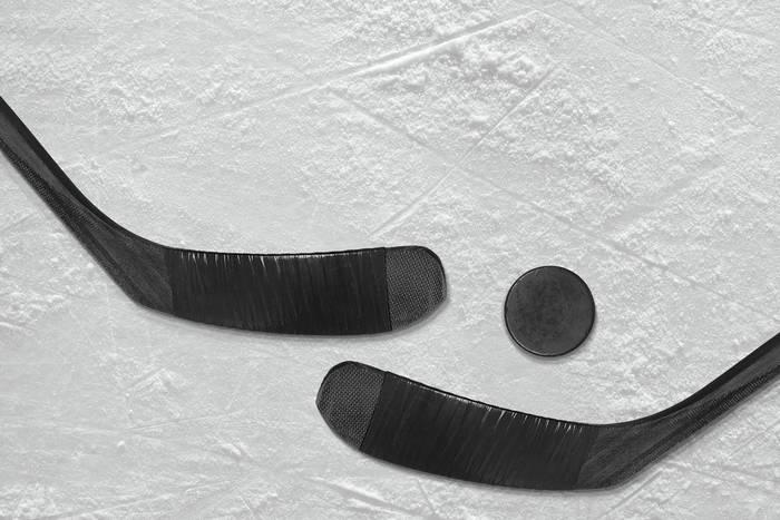 Szwedzki trener okradł polski klub hokejowy. Grozi mu więzienie