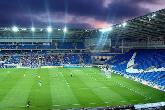 Cardiff City kupiło reprezentanta Islandii
