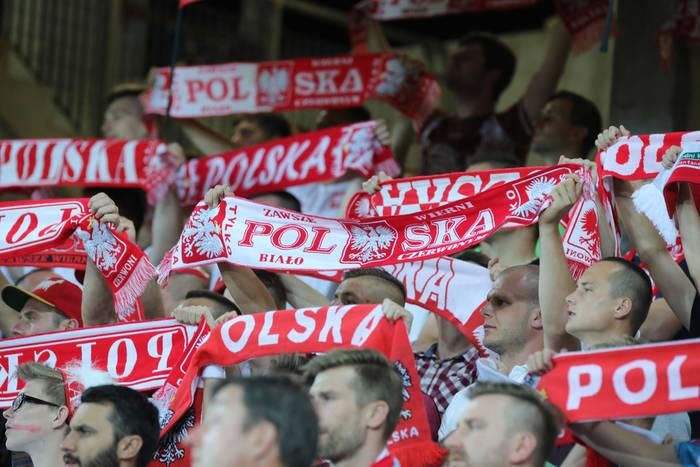Polska - Argentyna: transmisja TV i live stream online, gdzie obejrzeć mecz?