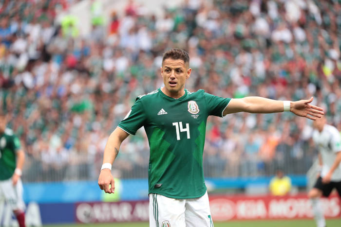 Javier Hernandez kontuzjowany. Kilka tygodni przerwy