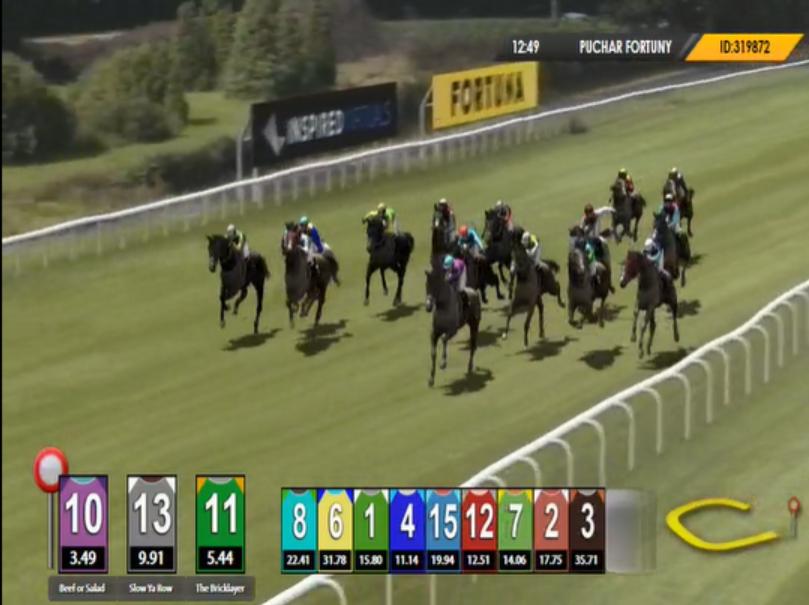 sporty wirtualne wyścigi koni