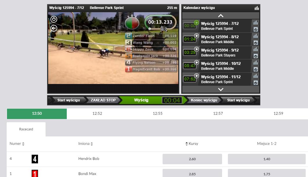 PZBuk - sporty wirtualne - wyścigi psów