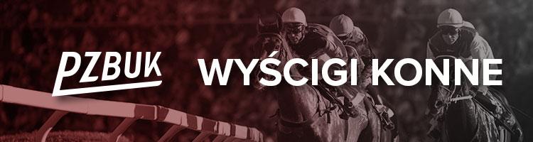 PZBuk - sporty wirtualne - wyścigi koni