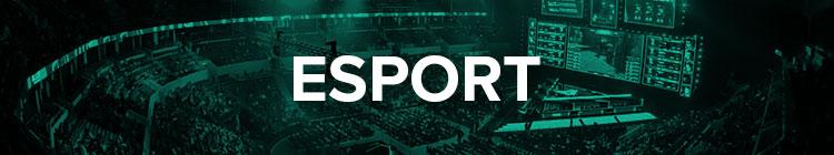 Esport - rozgrywki wirtualne