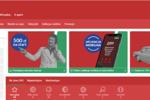 PZBuk rejestracja - sprawdź jak najlepiej założyć konto w PZBuk