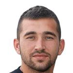 Milan Radin