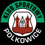 Górnik Polkowice